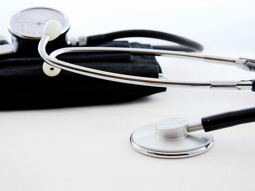 インコの健康診断の値段/料金と頻度。お迎え時の小鳥は必須!