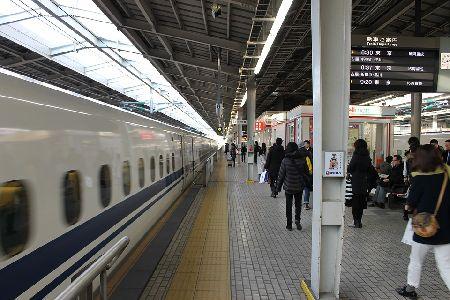 インコを電車や新幹線に乗せて移動する時の注意点3つ!要確認!