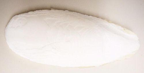 カトルボーンとボレー粉はインコにはどっちが良い?比較検証!